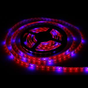 China SMD5050 Hydroponic Systems Led Plant grow light Waterproof Led Grow Strip Light on sale