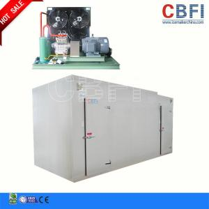 China Customized Size Blast Freezer Cold Room / Blast Freezer For Chicken Fish Meat on sale