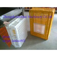 China chicken cages, animal cages, plastic chicken transport cage, poultry cages. 0086-13526735822 on sale