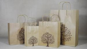 China Brown Kraft Paper Gift Bags Wholesale Full Size Custom Retail Merchandise Carrier Gift Shopping Bag on sale