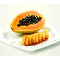 papaya seed powder free sample -- IlexChaenomeles lagenaria(Lolsel.) Koidz.