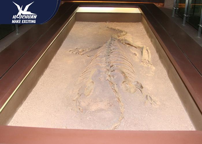 Artificial Fiberglass Dinosaur Fossils Statues / Natural