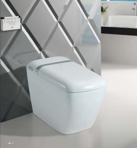China THB818 One piece Intelligent Smart Toilet with warm seat auto open and close on sale