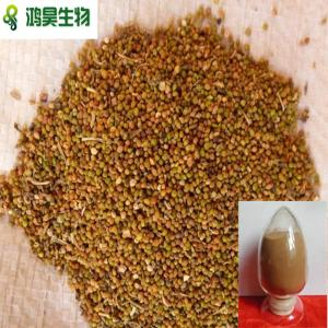 China natural herb medicine dodder seed extract on sale