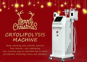 China Professional 5 Handles Cryolipolysis Slimming Machine 650nm Diode Lipo Laser on sale