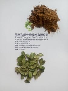 China Cosmetics raw material Arbutin 20-99%,4:1 Uva Ursi Extract, Arbutin, bearberry extract,Vaccinium Myrtillus Leaf Extract on sale