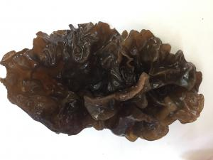 China Factory Price Premium NEW CROP China Dried Flower Mu Er Black Fungus Mushroom Whole on sale