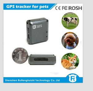 China IOS/Android APP worlds smallest pet gps tracker personal cheap gps pet tracker on sale