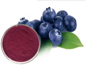 China Pure Natural Bilberry Fruit Powder, Bilberry Fruit Freeze Dried Powder, Bilberry Extract Powder on sale