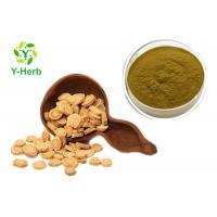 China Polysacharin Astragalus Membranaceus Root Extract Powder Polysaccharides 50% 70% on sale