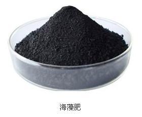 China seaweed fertilizer, liquid seaweed fertilizer ,Seaweed fertiliser, organic fertilizer,dry seaweed fertilizer on sale