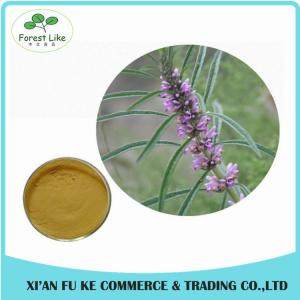 China Clear Heart and Regulate Menses Natural Motherwort Herb Extract on sale