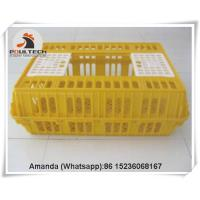 China Brazil Poultry Farming Plastic Poultry Transport Cage/Crate for Hatching Eggs & Plastic Live Chicken Transport Cage on sale
