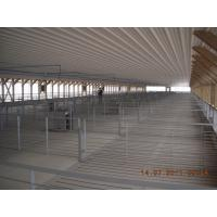 China Hot Galvanied Steel Pig Farming Equipment , Pig Sow Stalls For Fattening Hog on sale