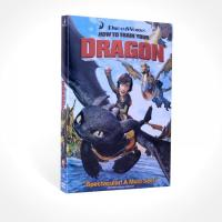 wholesale disney How to Train Your Dragon dvd,movie supplier wholesaler