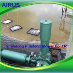 Aquaculture Farm Fish Shrimp Pond Air Blower Aeration 2.7 m3/min 3hp Blower
