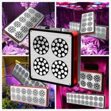 China CIDLY 200w 300w 400w 600w hans panel led grow light full spectrum Veg and Flower High par on sale