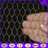 Hot Dipped Galvanized Chicken Wire Mesh , 50mm 2
