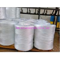 China ficelle de presse tordue par polypropylène de 2MM pp pour la machine carrée de presse de foin on sale