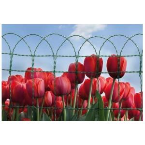 China Plastic Decorative Garden Border Fencing , Electro Aviary Wire Mesh on sale