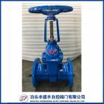Válvula de puerta dúctil de levantamiento del hierro del tronco de Shengfeng hecha en China con de alta calidad