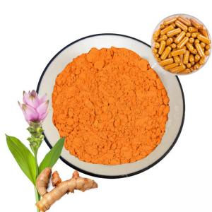China 95% Herbal Plant Extract Turmeric Curcumin Extract Powder For Capsules on sale
