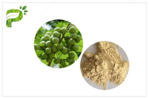 China UV Test Soapnut Extract , Saponins Natural Surfactant Cosmetic Plant Extract on sale