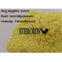 Yellow Powder Tren E Trenbolone Enanthate for Muscle Building Cycle custom clearance