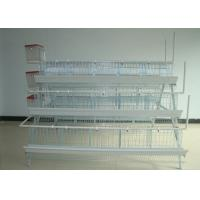 China Battery Chicken Farm Poultry Equipment With Auto Chicken Feeding System on sale