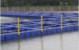 Quality 養魚場のポンツーン システム for sale
