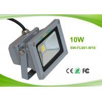 120°Beam Angle Indoor Outdoor 10 w Led Flood Light Bulbs for Aquarium 1000Lm 2700 - 6500K
