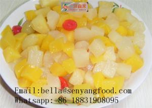 China Preservative-Free Canned Fruit Cocktail / Canned Mixed Fruit  in Syrup supplier
