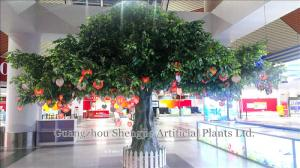 China 3m hotel indoor table decoration tree/artificial banyan tree on sale