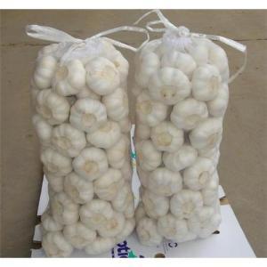 China pure white garlic 6.5cm on sale