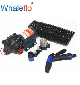 China Similar to Flojet FL-35S 20LPM electrical high pressure pump dc 12v high flow water pump on sale