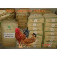 Poultry Powdered Multivitamin Mix , Feed Grade Powder Multi Vitamin No. SV-M-P01