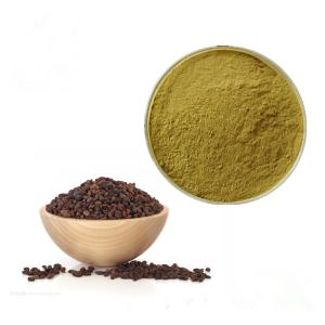 China 100% Natural Herbal Plant Extract Fructus Ligustri Lucidi Extract Powder on sale
