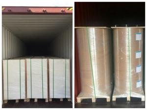 China Greaseproof 350gsm + 15g PE Coated Cardboard For Food Container wholesale