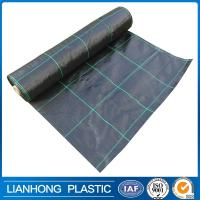 grid pattern pp woven weed control fabric, ground cover net/weed mat for agriculture