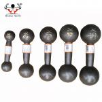 Round Head Fitness Equipment Dumbbells Perfect Handfeeling For Power Training