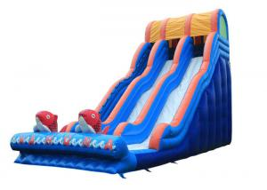 China Garden Outdoor Inflatable Water Slide , Big Party Cartoon Toddler Water Slide on sale