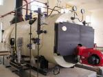 Três caldeiras das caldeiras de vapor do aquecimento de óleo da passagem, o elétrico ou o natural de gás de condensação