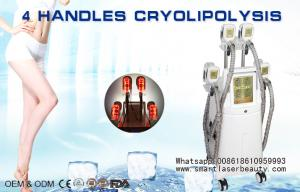 China Zeltiq Coolsculpting Cryolipolysis Machine , Cooshape Vaccum Fat Freezing Equipment on sale