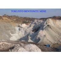 300 Mesh Absorbent Foundry Bentonite Used Of Green Sand Mold