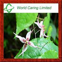 Herb Extract Epimedium Extract Icariin 10%-98% HPLC for men sexual enhancemet