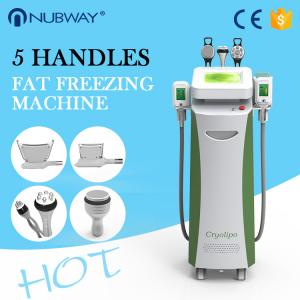 China Newly-released!!! The most featured Cryolipolysis Slimming Equipment Green Vertical on sale