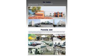 China Hangzhou Youngsun Intelligent Equipment Co.,Ltd manufacturer