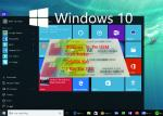 Genuine OEM Key License Coa License Sticker Windows 10 Product Key Sticker