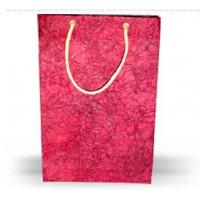 High quality 2012 printed paper bag