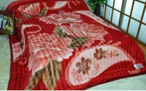 China Double Printed Warm 100% Polyester Blanket ISO , 2 Ply Blanket For Family on sale